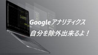 Googleアナリティクス 自分のアクセス